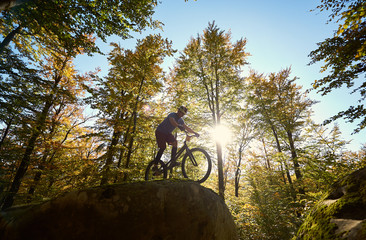 Active male cyclist riding on trial bicycle, making acrobatic trick on big boulder in the forest outdoor on summer sunny day. Concept of extreme dangerous sport