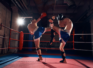 Two strong male boxers training kickboxing in the ring at the sport club