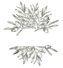 Vintage olive tree plant logo isolated