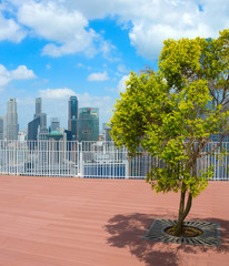 Tree roof top skyscraper Singapore