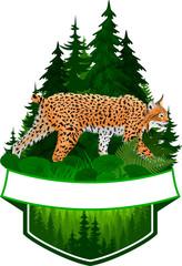 vector woodland emblem with wild bobcat lynx
