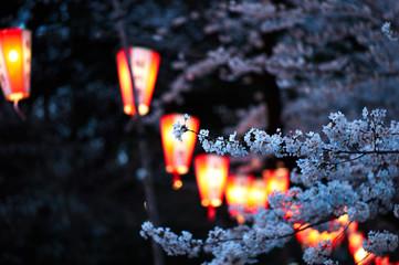 Laterns at Ueno Park during Hanami - Cherry Blossoms