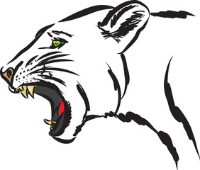 puma wild animal illustration