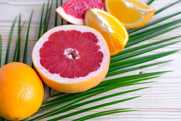 Palm leaf with grapefruit and orange. Tropical banner with fruits and a place for an inscription. Holidays