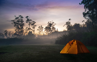 Camping Tent Beside Forest on Misty/Foggy Morning On Sunrise/Sunset. Concept of Active Outdoor Recreation with Sense of Adventure