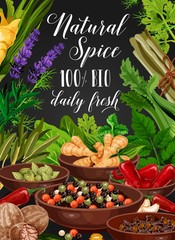 Spice and herb, cooking seasonings and condiments