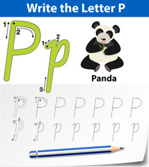 Letter P tracing alphabet worksheets