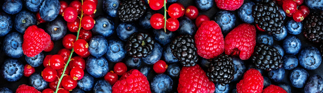Various fresh summer berries Background. Panorama. Top view. Strawberry, Raspberry, Red currant,  Blueberry and Blackberry