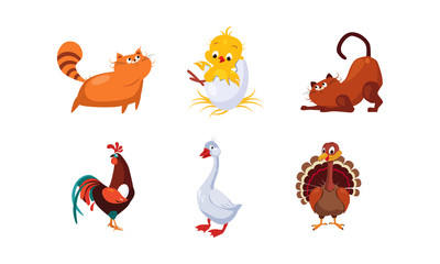 Cute cartoon farm animals and pets set, cats, cock, chicken, turkey, goose vector Illustration