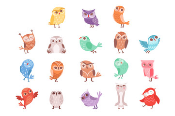 Wall Mural - Cute cartoon colorful owls set, lovely owlets vector Illustrations