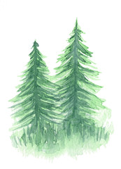 Beautiful watercolor background with two mystery light green coniferous trees. Mysterious fir or pine forest in mist illustration for winter Christmas design, isolated on white background