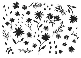 Big collection of black hand drawn chinese ink flowers, leaves and grass. Sketch inky floral elements for pattern design, greeting card decoration, logo
