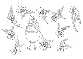 hand drawn tasty vanilla ice cream with vanilla flowers and leaves vector illustration