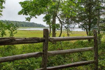 Great Neck Marsh