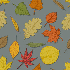 Vector Seamless Autumn Pattern with Leaves on Gray Background