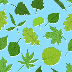 Vector Seamless Spring Pattern with Leaves on Blue Background