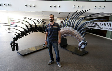 Argentine paleontologist Pablo Gallina poses next to a replica of the skeleton of a newly identified dinosaur Bajadasaurus pronuspinax, in Buenos Aires