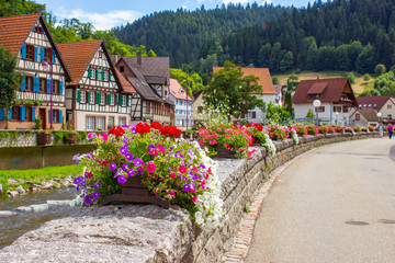 Schiltach in Black Forest, Germany Wall mural