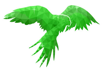 Green low poly illustration with flying parrot