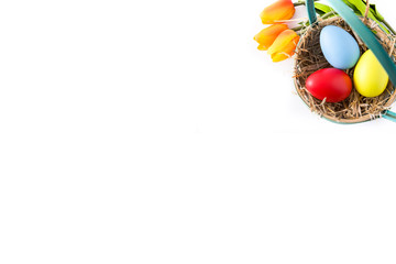 Colorful easter egg in nest isolated on white background. Top view. Copyspace