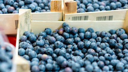 Boxes with fresh blueberries on the market - image