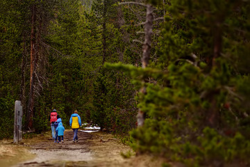 Сlose-knit family walk in Swiss national Park on spring. Hiking with little kids.