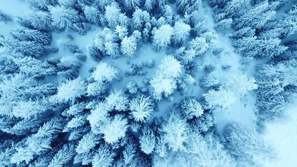 Winterwonderland Engadin