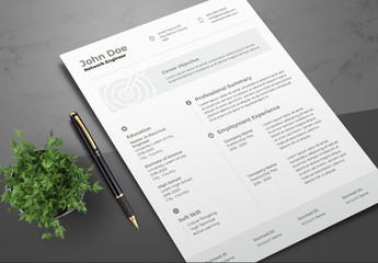 Resume Layout with Gray Accents and Bullseye Illustration