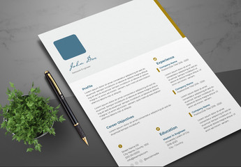 Resume Layout with Teal and Brown Accents