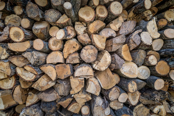 Pile of natural wooden cut logs