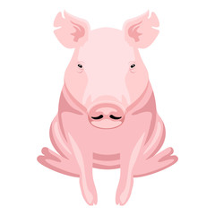 Front view of a pig sitting. Farm animal. Vector illustration design