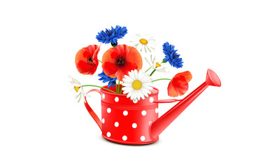 Gießkanne mit Blumenstrauß, rot