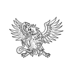 Drawing sketch style illustration of a Mexican eagle, golden eagle or northern crested caracara fighting a rattlesnake, viper, snake or serpent in black and white on isolated background.