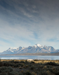 View from Tierra Patagonia Lodge of Torres del Paine National Park, Patagonia, Chile.