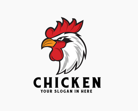 Vector cartoon angry rooster head chicken logo design inspiration