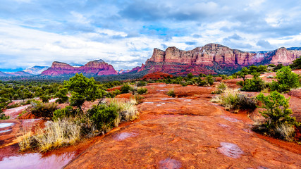 Streams and Puddles on the Red Rocks the Munds Mountain after a heavy rainfall near the town of Sedona in northern Arizona in Coconino National Forest, USA Wall mural