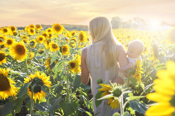 Mother and Baby Daughter Walking through Sunflower Field at Sunset