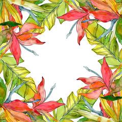 Tropical floral botanical flowers. Watercolor background illustration set. Frame border ornament square.