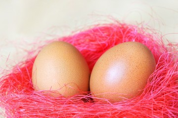 eggs laid in a nest of pink