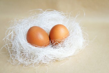two eggs laid in the nest