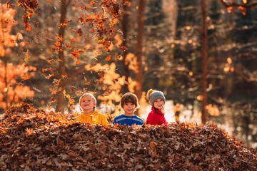 Three children playing in a pile of leaves, United States