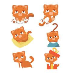 Set of different cartoon cats. .