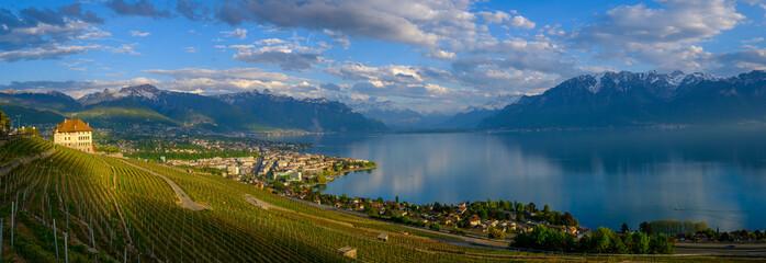 Top view to vineyards near Vevey at Geneva lake