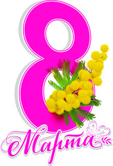March 8 greeting card text translated from Russian. Lettering and yellow mimosa flower symbol International Womens Day