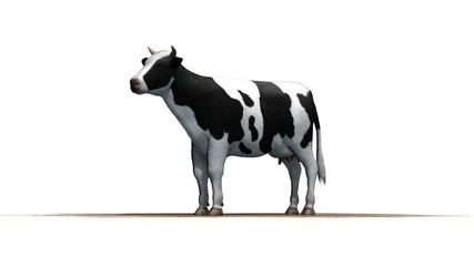 Cow on a sand area - separated on white background