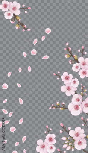 Rose On Transparent Background Handmade Background In Oriental