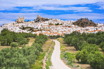 Fotorollo Pistazie View of Olvera village, one of the beautiful white villages (Pueblos Blancos) of Andalucia, Spain