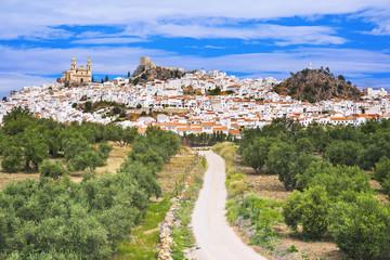 Foto auf Leinwand Pistazie View of Olvera village, one of the beautiful white villages (Pueblos Blancos) of Andalucia, Spain