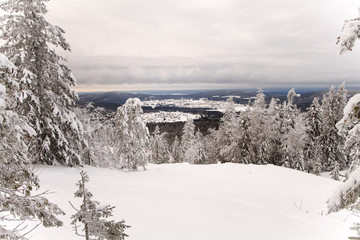 Cloudy sky over the mountain forest. Sverdlovsk region. Russia.