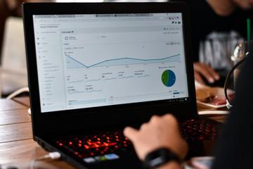 Website Analytics Dashboard, Webmaster was checking traffic visitor report on website